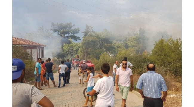 Antalya'da orman yangını mahalleliyi sokağa döktü