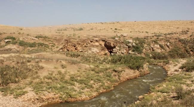 Çırpı Deresinin suyu neden kayboluyor ?