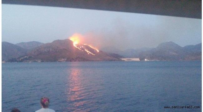 Dünyanın en büyük guletinin yapıldığı tersane yakınında korkutan yangın