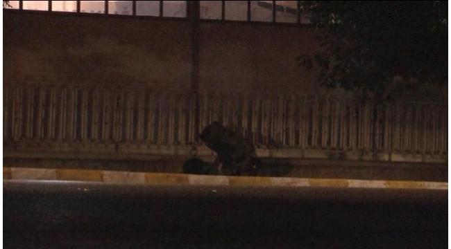 Ege Üniversitesi'nde bomba paniği