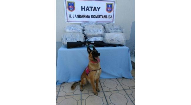 Hatay'da 61 kilo kubar esrar ele geçirildi