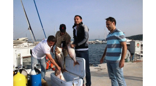 Kaçak avcılığa suçüstü