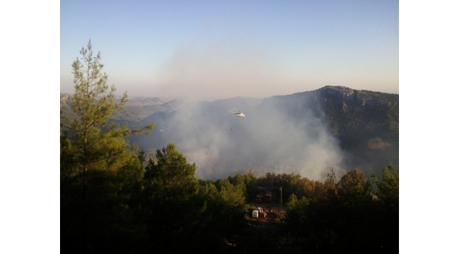 Kozan'da çıkan orman yangınında 10 hektarlık alan zarar gördü