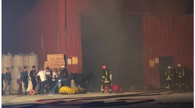 Kükürt deposundaki yangından kurbanlık tosun son anda kurtarıldı