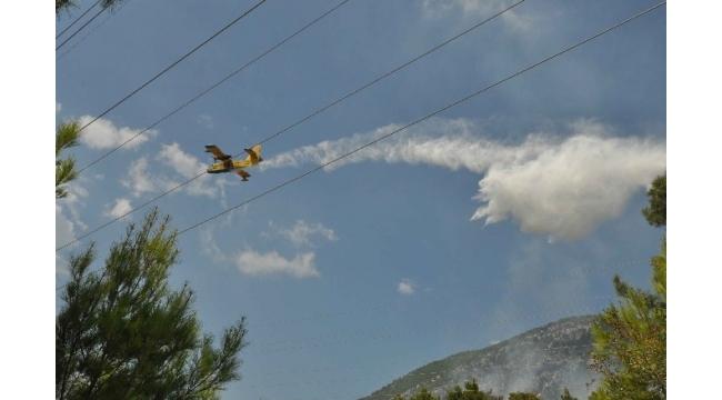 Manavgat'ta orman yangınında 5 hektar alan zarar gördü