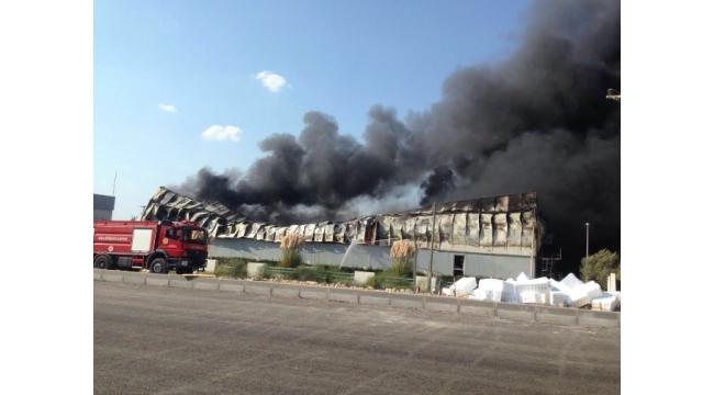 Milas'ta yangın fabrikayı kül etti