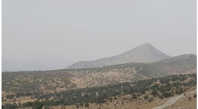 PKK'lılardan koruculara taciz ateşi