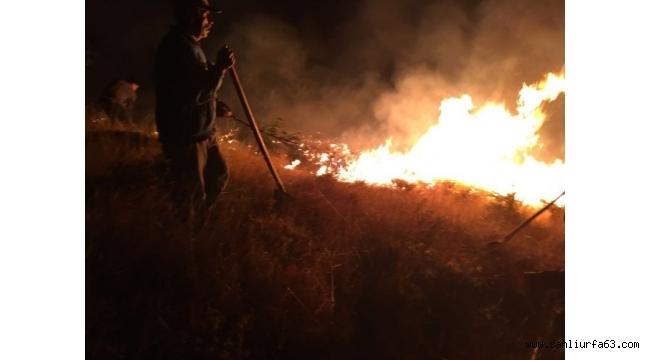 Pülümür'deki yangına müdahale sürüyor