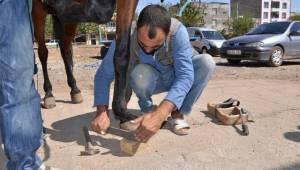 Şanlıurfa'da nalbançılık direniyor