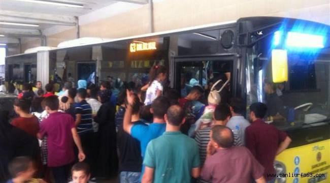 Şanlıurfa'da ücretsiz ulaşım çileye dönüştü