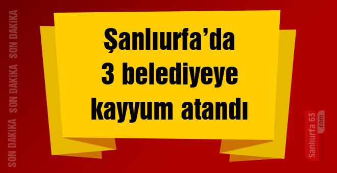 Urfa'da 3 belediyeye kayyum atandı