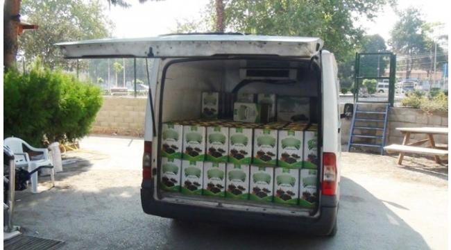 Zeytin tenekelerinde 15 bin paket kaçak sigara ele geçirildi
