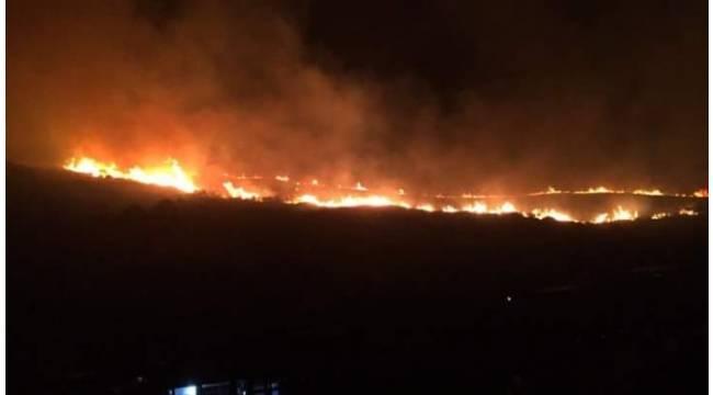 Bursa'da büyük orman yangını
