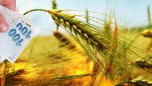 Çiftçilere 640 milyon TL'lik destek yarın ödeniyor