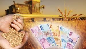 Çiftçilere 640 milyon TL ödenecek