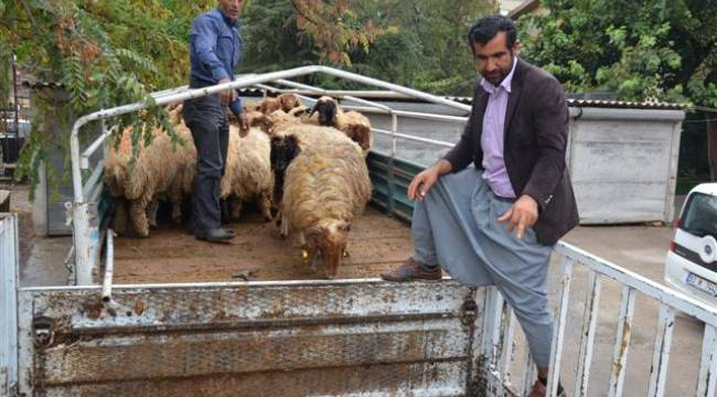 Genç çiftçilere hibe desteği devam ediyor