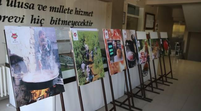 Nar Fotoğraf sergisi açıldı