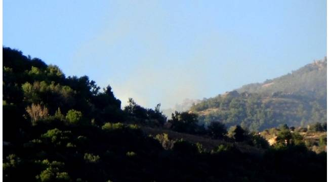 PKK'lı teröristler ormanı yakarak kaçıyor