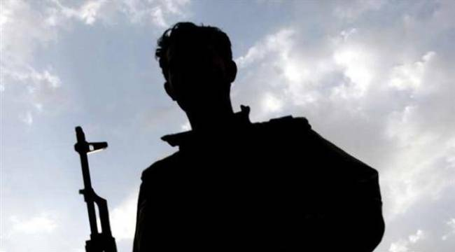 Şanlıurfa'da 1 terörist teslim oldu
