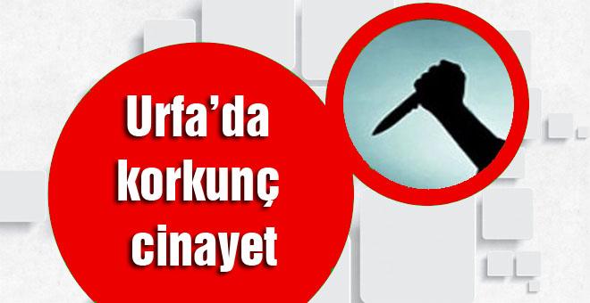 Şanlıurfa'da korkunç cinayet