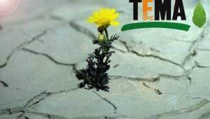 TEMA Vakfı Şanlıurfa'da İl temsilcisi arıyor