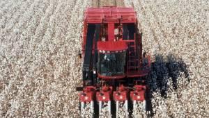 Urfalı Çiftçiler Pamuklarını ucuza satmamalı