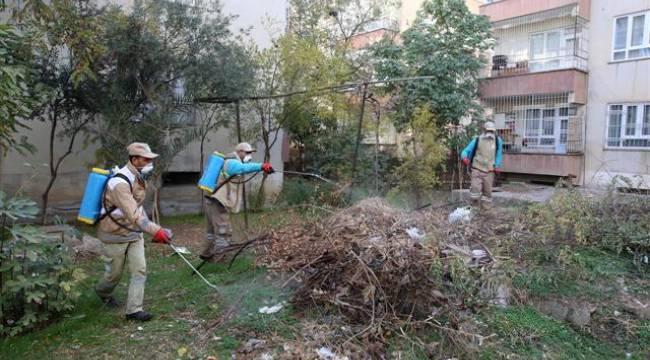 Haliliye'de sivrisinek mücadelesi