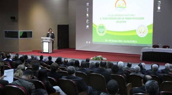 Şanlıurfa'da uluslararası çalıştay