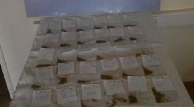 Şanlıurfa ve 9 il'de uyuşturucu operasyonu