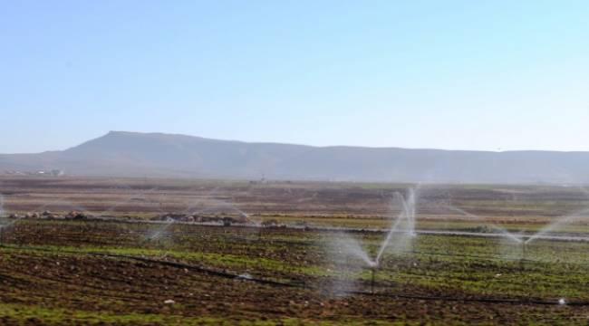 Tarımda elektrik kullanımı yüzde yüz arttı