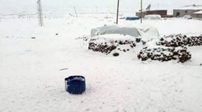 Viranşehir'de Kar Yağışı etkili oldu
