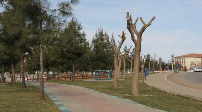 15 Temmuz Şehitler Parkı bitiyor-Videolu Haber