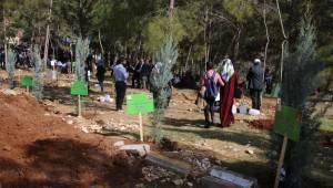 Çatak'ta 5 bin ağaç fidanına can suyu verildi-Videolu Haber