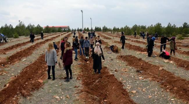 Osmanbey Kampüsünde Bin Fidan Dikildi-Videolu Haber