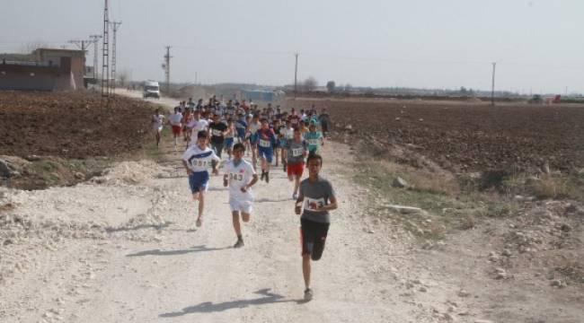 Şanlıurfa'da 300 sporcu kıyasıya yarıştı