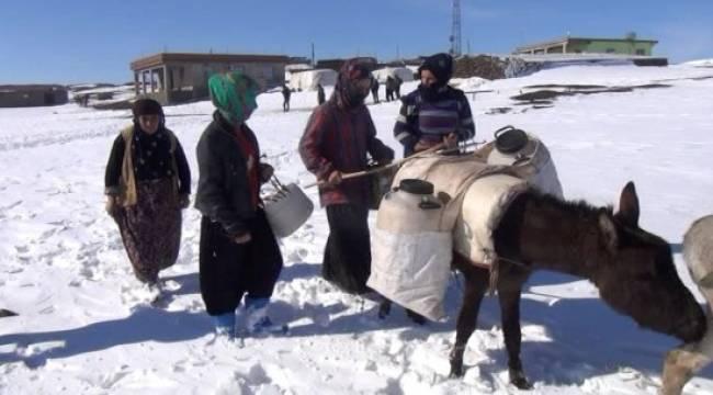 Urfalı kadınların eşekle su taşıma çilesi