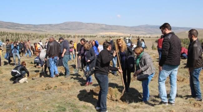 Açıköğretim öğrencileri Urfa'da ağaç dikecek