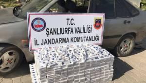 Kaçak sigara operasyonu: 10 gözaltı