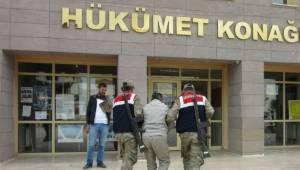 Urfa'da Hayvan hırsızlarına karşı özel ekip oluşturuldu