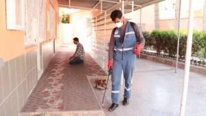 Ceylanpınar'daki Camiler ilaçlanıyor-Videolu Haber