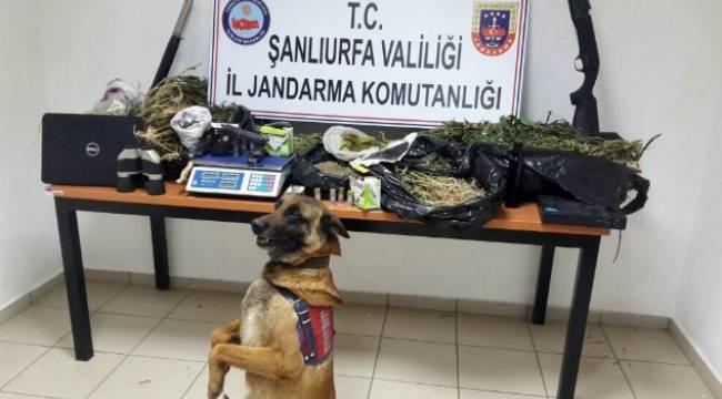 Karaköprü'de Uyuşturucu Operasyonu 1 Gözaltı