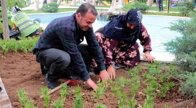 Sınırın sıfır noktasında çiçek ekimi-Videolu Haber