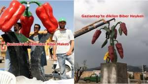 Urfa'da kaldırılmıştı, Gaziantep Yeni Dikti