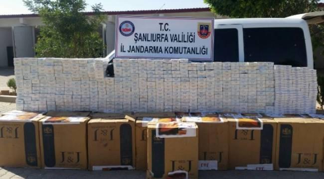 17 bin 400 paket kaçak sigara ele geçirildi