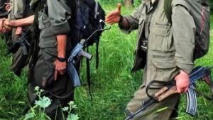 Akçakale'de PKK / PYD kuryesi yakalandı