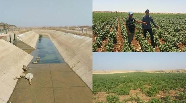 18 Mahallede 20 Gündür Su Yok-Videolu Haber
