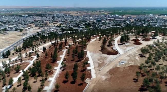 Eyyübiye'ye yeni mesire alanı-Videolu Haber