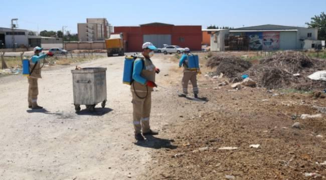 Haliliye belediyesi ilaçlama çalışması-Videolu Haber