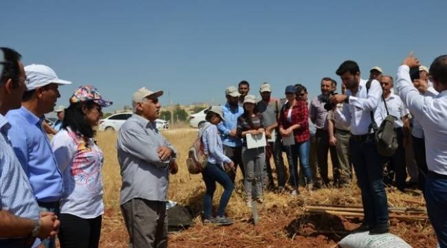 Harran Üniversitesinde Öğrencilere araziler dağıtıldı