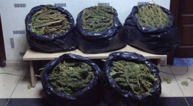 Siverek'te uyuşturucu operasyonu